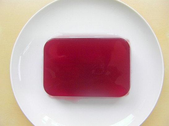 japanesediet agar(6)