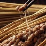 Diet food natto