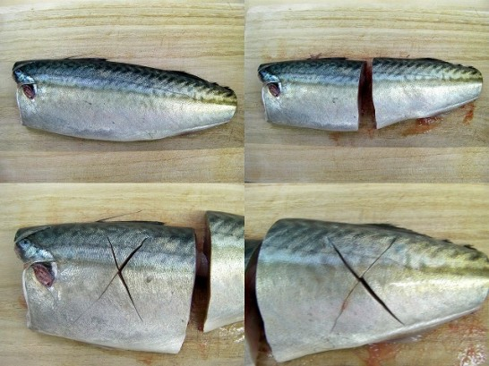mackerel (20)new1