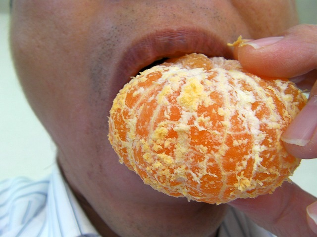 orange onigiri japanese food (9)