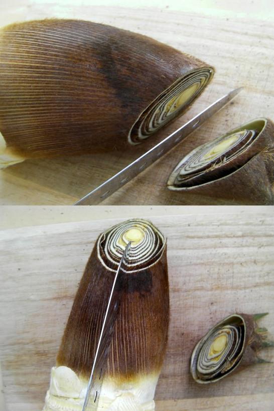 bamboo shoots (4)new1
