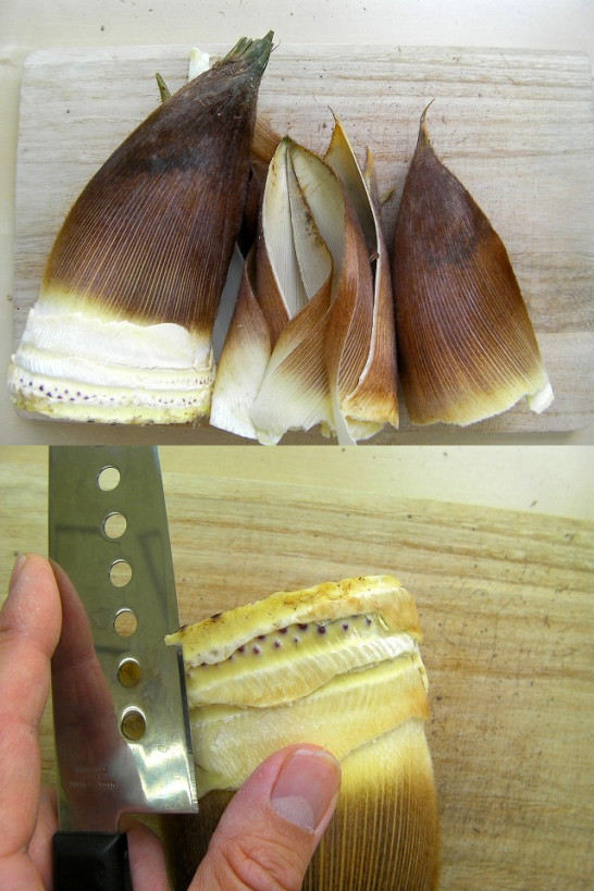 bamboo shoots (7)new0