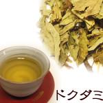 Fish mint tea