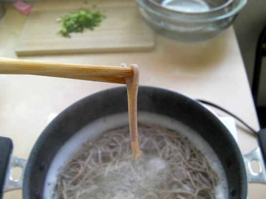 Oroshi soba picture (19)