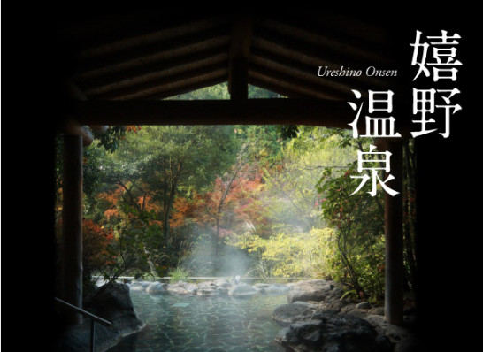 Onsen tofu picture2