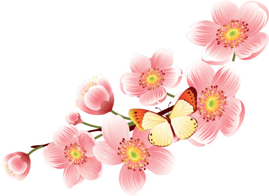 flower1730